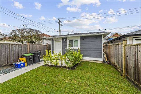 Back Yard/Laneway House
